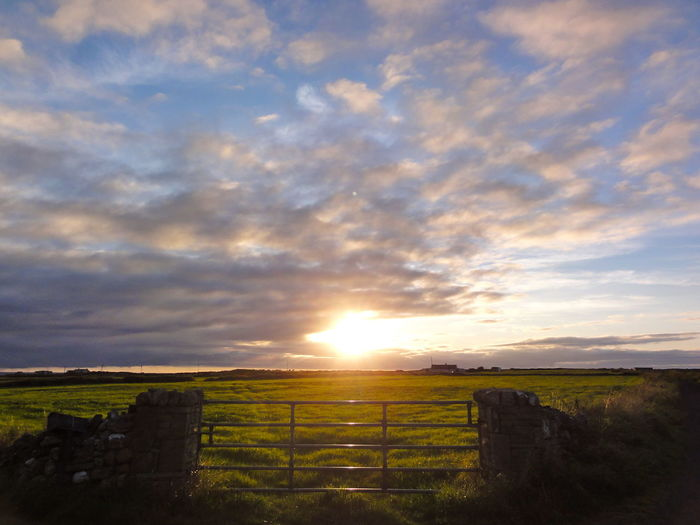 3D Atmosphere Calmness Cloudscape Cloudy Country Dramatic Sky Ennis Enyoing Life Farming Fence Grass Ireland Landscape Light Majestic Outdoors Peacful Day Peasture Sky Stop And Stare Sunset Tranquil Scene Landscape With Whitewall
