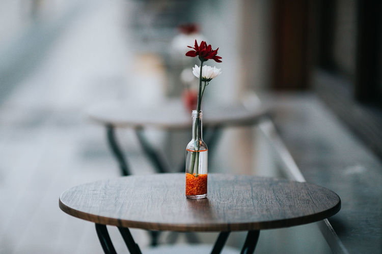 Close-up of red rose on table