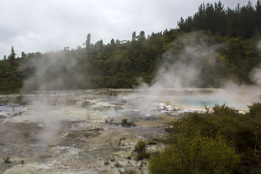 Geothermal terrace and steam from hot springs , Orakei Korako park, New Zealand Blue Lake Impressive Steam Travel Wanderlust Beauty In Nature Boiling Water Earthquake Environment Geological Formation Geology Geothermal  Geothermal Activity Heat - Temperature Hidden Valley Hot Pools Hot Spring Landscape Nature New Zealand Power In Nature Steam Volcanic  Volcanic Landscape Water