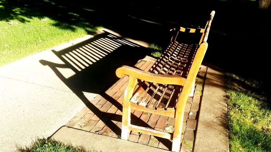 Macalester St Paul Mn Summertime Light And Shadow College Bench