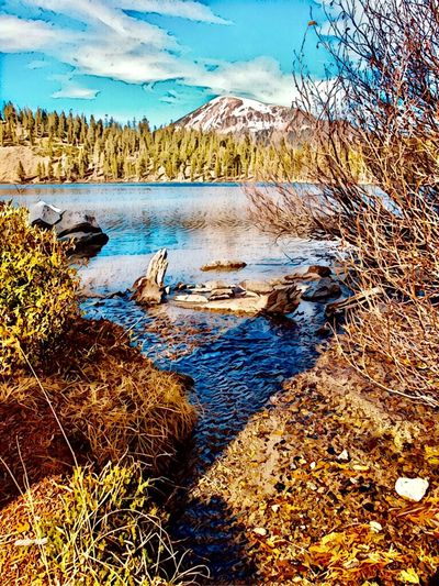 Eastern Sierras Mountains Mammoth Lakes, CA Lake George Mammoth Mountain Water Tranquility Nature Scenics - Nature Beauty In Nature Plant Tranquil Scene