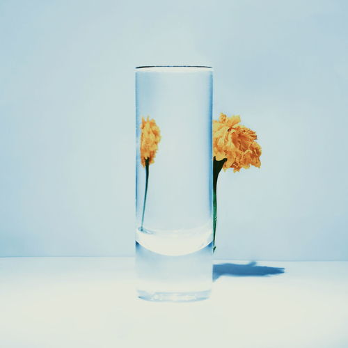 Glass Indoors  Studio Shot Transparent Drinking Glass Food And Drink Household Equipment Water Glass - Material No People Still Life Table Blue Close-up Freshness Nature Refreshment Drink Colored Background Clean Blue Background Minimalism Illusion Modern Art