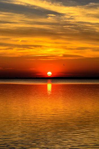 When the Sun goes down Water Nautical Vessel Sea Sunset Beauty Beach Red Summer Gold Colored Sun Romantic Sky Seascape Coast Dramatic Sky Springtime Decadence