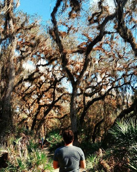 Many colors Exploring Exploretocreate Hiking Neverstopexploring  Natureshots VSCO Vscocam Colorful Rsa_nature Igtravel Travelgram Travel Florida USA Americana Pixelpanda
