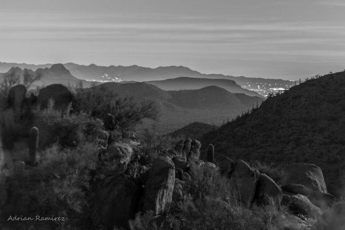 Landscape Saguaro Arizona Night Sky Moonlight Monochrome Langzeitbelichtung Black And White Photography Desert Long Exposure