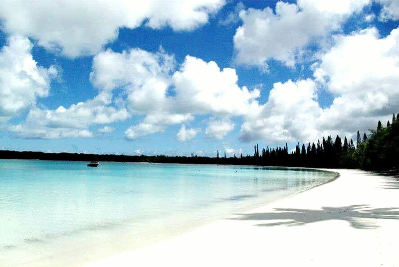 Water Landscape Cloud - Sky Nature Scenics Outdoors Lake Travel Destinations Tree Tranquility Tranquil Scene Sky No People Nature Reserve Day Vacations Beauty In Nature Beach Ile Des Pins Nouvelle Calédonie Tranquility Travel Travel Photography