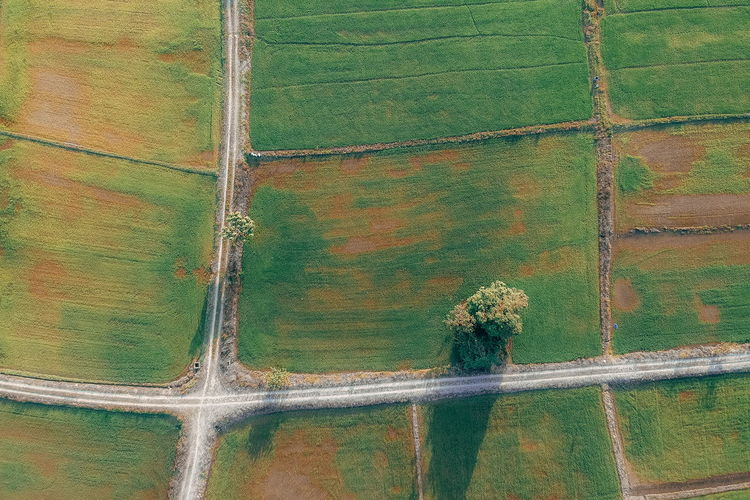 Day Landscape Rural Scene No People Plant Aerial View Beauty In Nature Growth Agriculture Environment Farm Nature Land Scenics - Nature Tranquil Scene Green Color Field Tranquility Outdoors Pattern