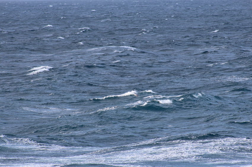 TR2 Choppy Fish Fishing Fishing Boat Nets North Sea Rough Sea Tr1 Trawler Trawlermen Water