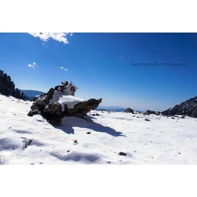 Ravipatelphotography Kashmir Series