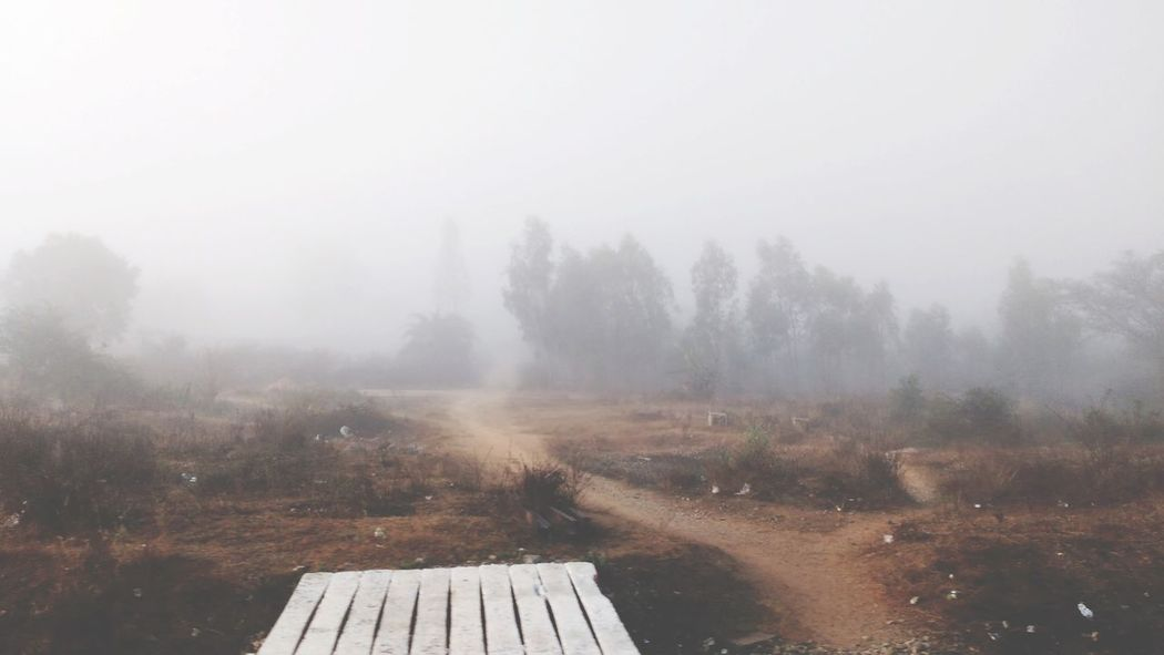 In to the zombie world , Foggrrrh! Weather Tree Cold Temperature Nature Winter Tranquility Beauty In Nature Landscape Scenics Idyllic Tranquil Scene No People Outdoors Snowing Day Welcome To Black Long Goodbye EyeEmNewHere