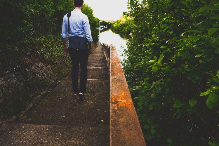 Rear view of a man walking on tree