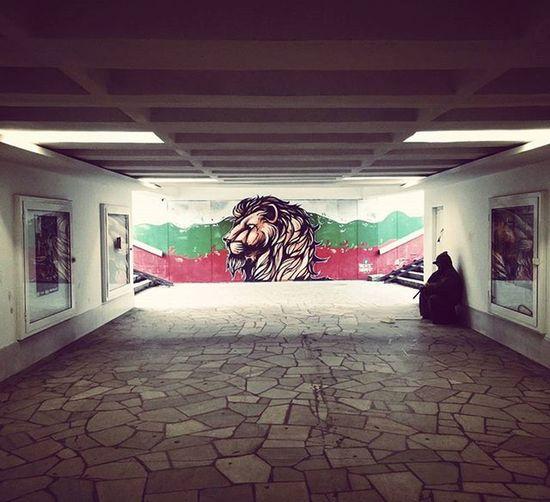 Bulgaria Plovdiv 2019 Graffiti Flag