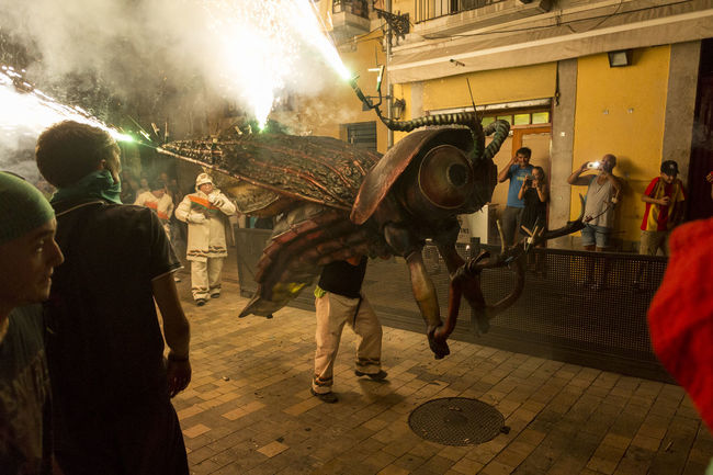 Besties a les festes de Sant Roc 2016 Besties Bug Catalonia Catalunya Celebration Culture Fire Firerun Fireworks Illuminated Light And Shadow Men Night Night Lights Nightphotography Outdoors Party Time! Performer  Sant Roc Spectator Street Traditional
