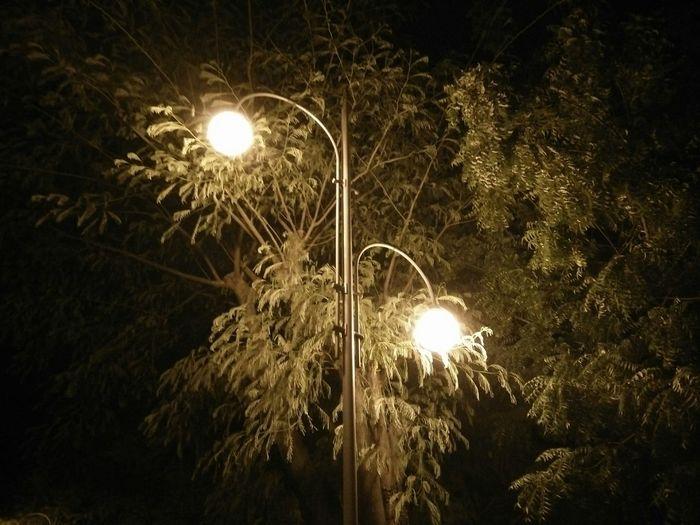 The OO Mission Nightshot Streetlight Lights