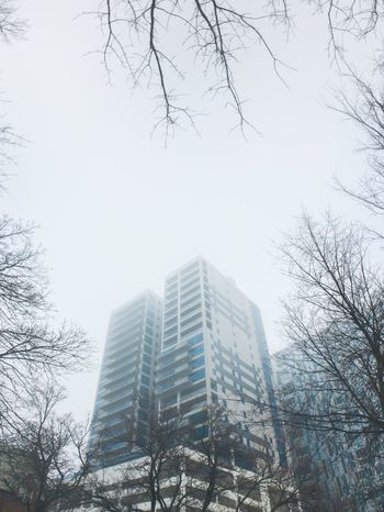 IPSWeather Fog IPhoneography Architecture Cortex Cam Inmacus Building