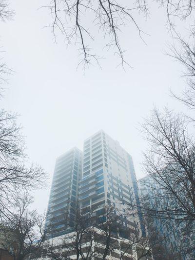 IPSWeather Fog IPhoneography Architecture Cortex Cam Inmacus Building