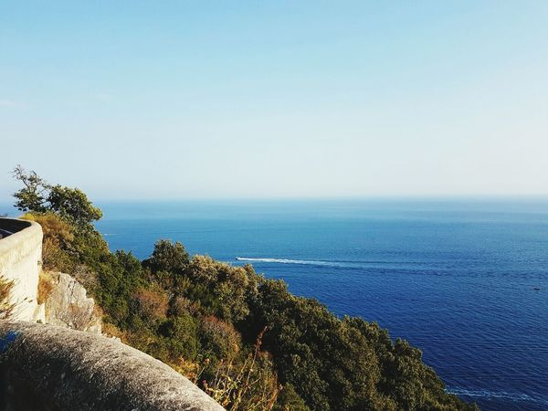Cetara Water Sea Horizon Over Water Blue Beauty In Nature Seascape Coastline Clear Sky Nature
