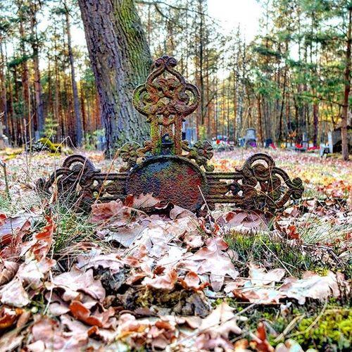 Abandoned graveyard Abandonedgraveyard Cross Crucifix Crucifixion Poland Wroclaw Wroclove