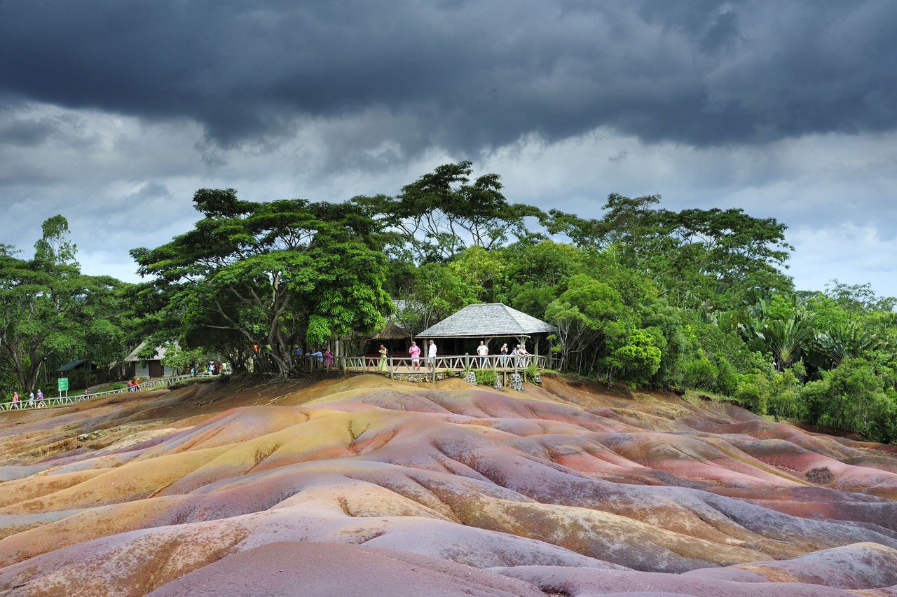 Dramatic landscape by trees growing at tourist resort against cloudy sky