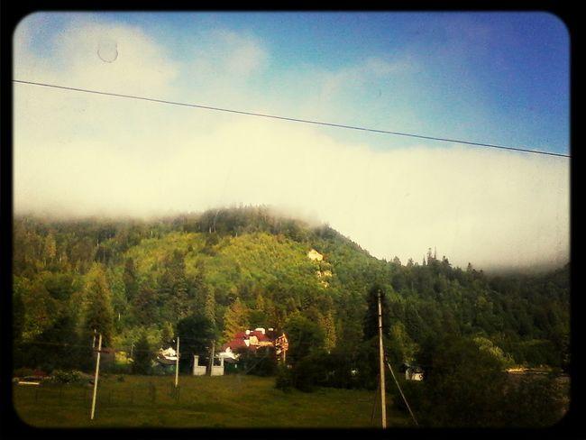 карпати туман гори