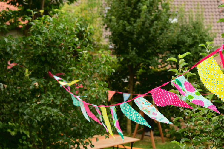 Banderolas Birthday Birthday Party Bunting Buntings Clothesline Colorful Day Flag Garden Party Hanging Multi Colored Nature No People Outdoors Pennant Pennoni Tree Wasp