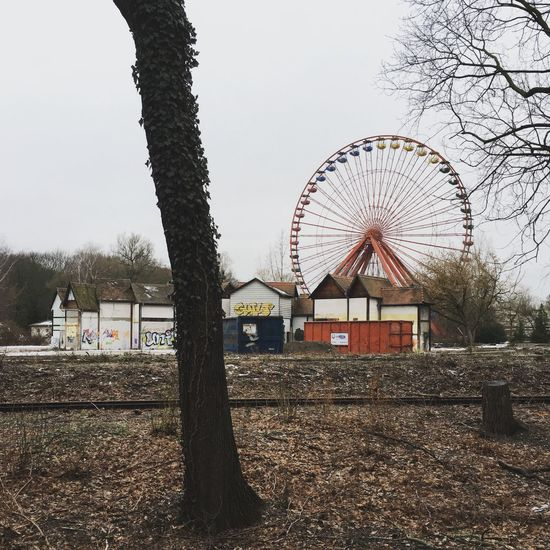 Architecture Architecture_collection Berlin Photography Emptiness Ferris Wheel Graffiti Abstract Amusement Park Architecture Bare Tree Berliner Ansichten Berlinstagram Branch Building Exterior Built Structure Ferris Wheel Minimal Nature No People Outdoors Plänterwald Sky Spree River Spreepark Tree