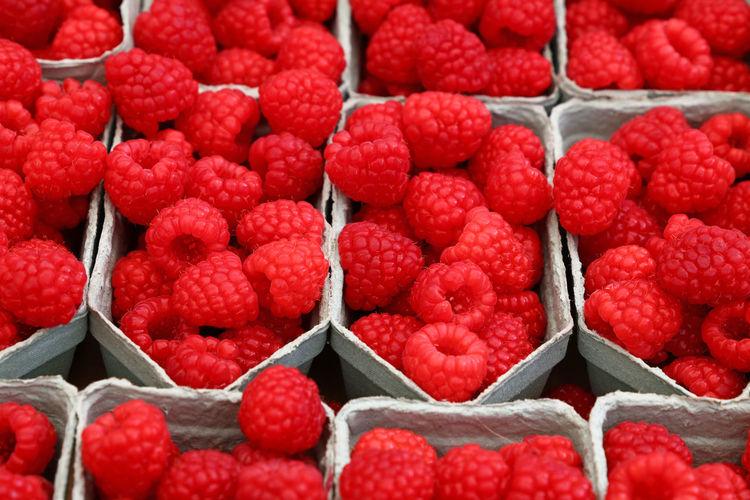 Full frame shot of raspberries in boxes for sale