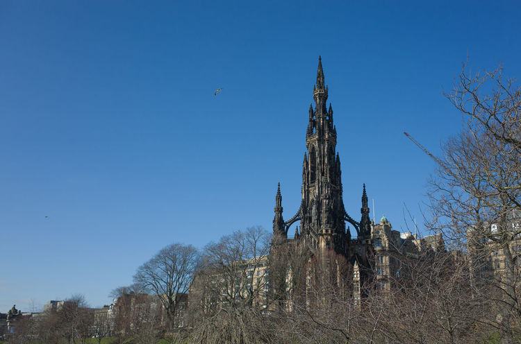 Edinburgh Scott Monument Bare Tree Branch Day Low Angle View Nature No People Outdoors Sky Tree Tree Trunk