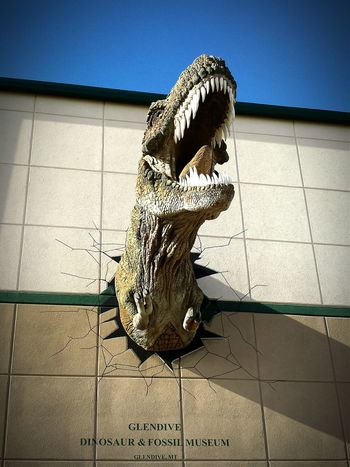 LOOK OUT!! Dinosaur Tyrannosaurus Rex Montana Museum Roadside America My American Road Trip Cheese! Dinosaurs Travel Photography The Traveler - 2015 EyeEm Awards