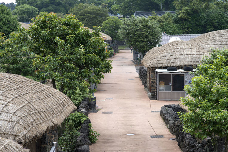 landscape of Seongeup Folk Village in Jeju Island, South Korea JEJU ISLAND  Path Seongeup Folk Village Architecture Beauty In Nature Building Exterior Built Structure Day Growth Nature No People Outdoors Plant Tree Water