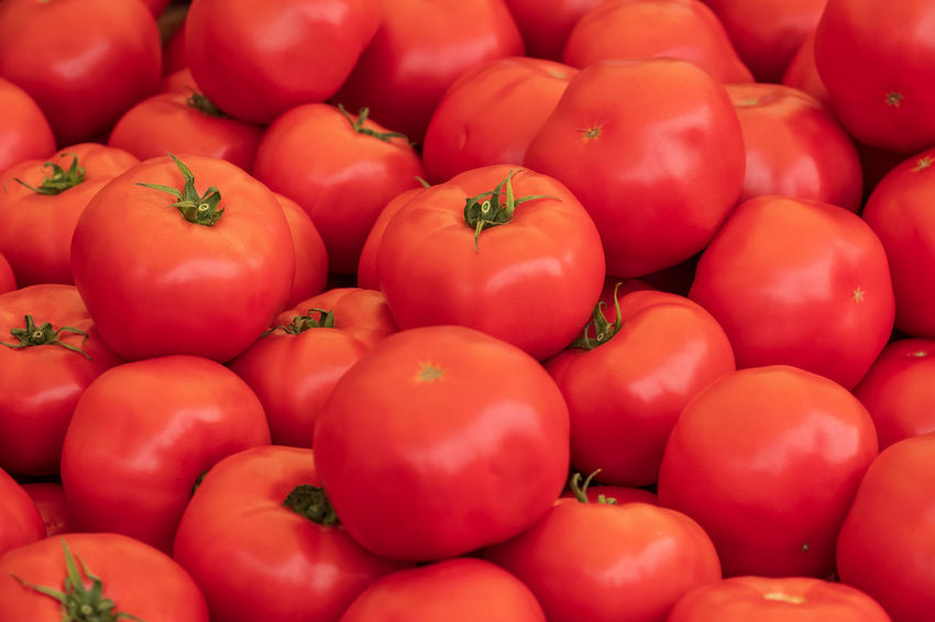 Naschmarkt Abundance Backgrounds Close-up Food Food And Drink For Sale Freshness Fruit Full Frame Healthy Eating Large Group Of Objects Market Market Stall No People Organic Red Retail  Retail Display Ripe Sale Still Life Tomato Vegetable Wellbeing