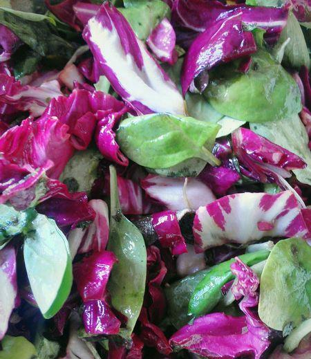 Bunter Pflücksalat Ready To Eat Healthy Multicor Salad Vegetable Full Frame Close-up
