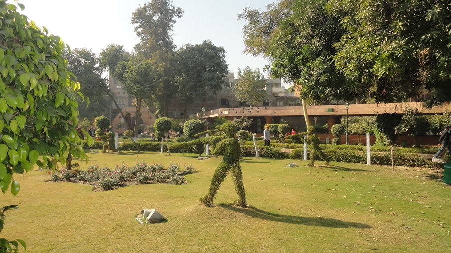 Human shape topiary in jallianwala bagh
