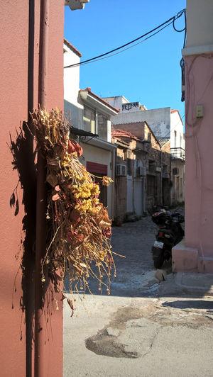 Street amidst buildings against sky on sunny day