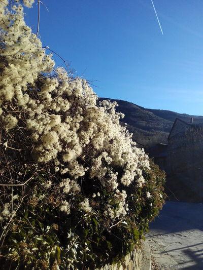 Winter No People Valle Benasque Anciles