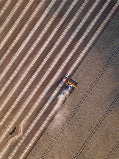 High angle view of worker working on agricultural land