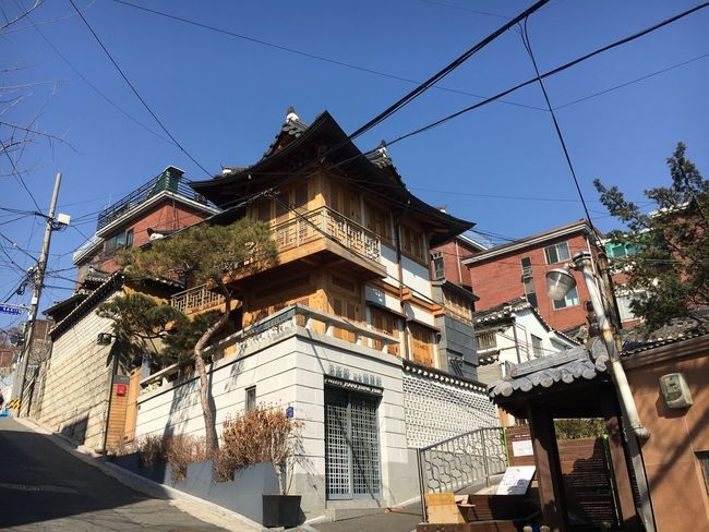 Koreanstyle Korean Temple Korean Traditional Architecture Korean Culture Korean Culture Korean Architecture Building Exterior Built Structure Cable Low Angle View Sky Outdoors Tree Clear Sky EyeEmNewHere