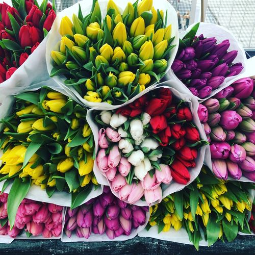 High angle view of tulips at market