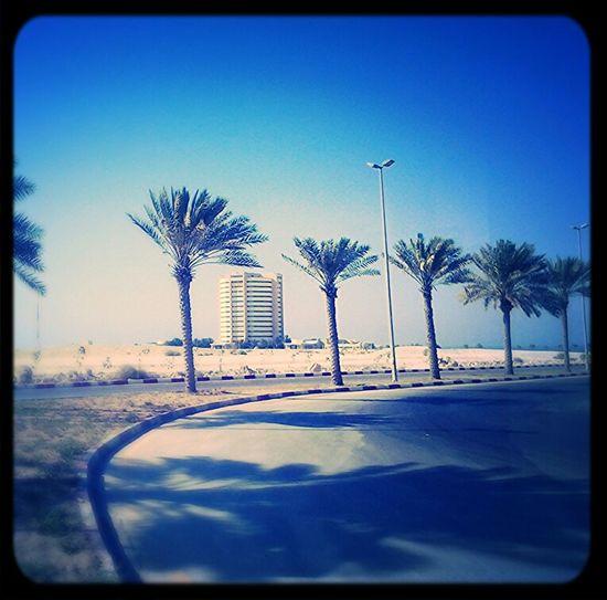Enjoying The Sun Taking Photos Persian Gulf