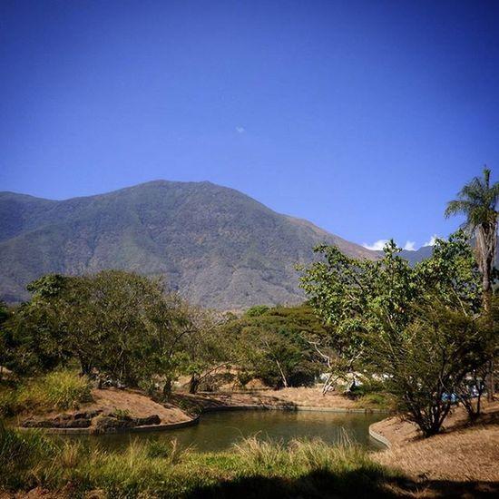 Avila Avila Nature ParqueDelEste Venezuela Found On The Roll Nature's Diversities