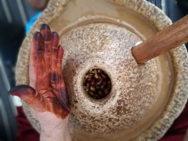 Processing argan seeds Argan ArganOil Berber  Cosmetic Fatigue  Food Hand Handmade Hands Hands At Work Healthy Marocco Nut Nuts Oil Processing Traditional