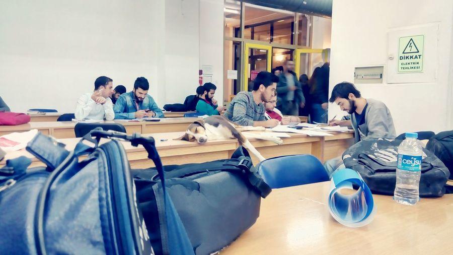 Anadoluuniversitesi