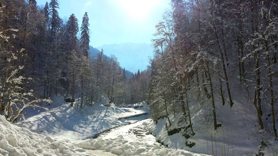 The Great Outdoors - 2017 EyeEm Awards Garmisch-partenkirchen Garmisch Garmischpartenkirchen Partnachklamm Snow Winter Cold Temperature Landscape Beauty In Nature Landschaft Winter Winter Wonderland Wald Forest Alps Alpen Mountain Berge Fluss Wildbach Klamm Gorge Tree Nature