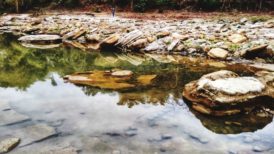 last water in dry season this year, Plant Life Plant Life Coral Colored Nature Morning Family Happy Tree Riverside Traveling EyeEm Nature Lover Rocks Plant Life River EyeEm Nature Lover EyeEm Gallery EyeEm Is Everywhere EyeEm Indonesia Naturelovers Calm Countryside