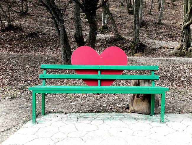 Bench No People Heart Shape Multi Colored Outdoors Day Nature Outdoor Photography VSCO PRISHTINA Vscokosova Point Of View Nature Heart Big Heart❤ Withlove