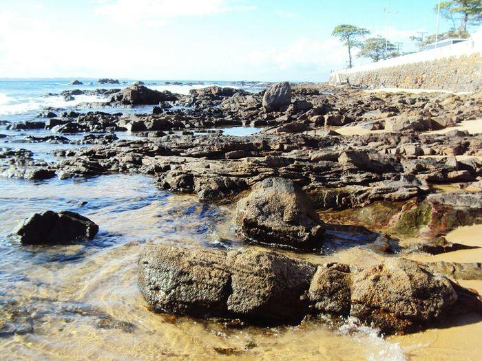 Praia Do Forte,