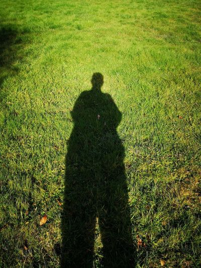 Giant Giant Shadow Green Grass Grassland Shadow My Best Photo