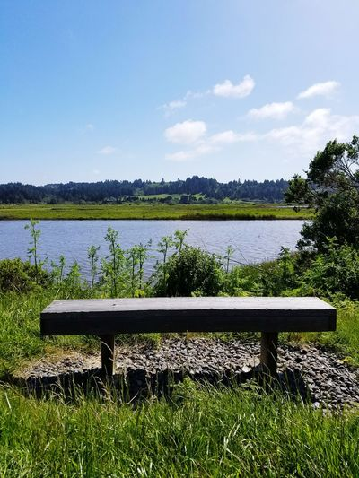 Romantic Scenery Romantic Bench Romantic Spot Water Tree Lake Sky Grass Bench Countryside Lakeside Tranquil Scene Park - Man Made Space Calm Tranquility Scenics Park