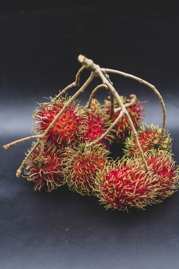 Close-up of red berries on table against black background