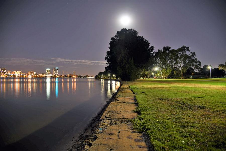 Cityscape moonshine Night Tree Illuminated Scenics Water Nature Sky Taking Photos Enjoying Life Relaxing